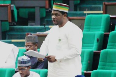 We will call for the President's resignation - House of Reps member